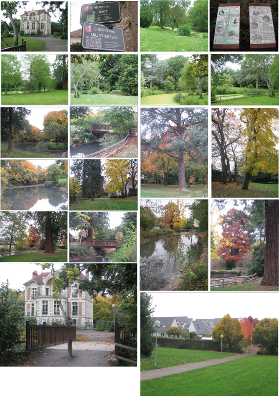 Parc de demazis - Jardin interieur du lac angers ...