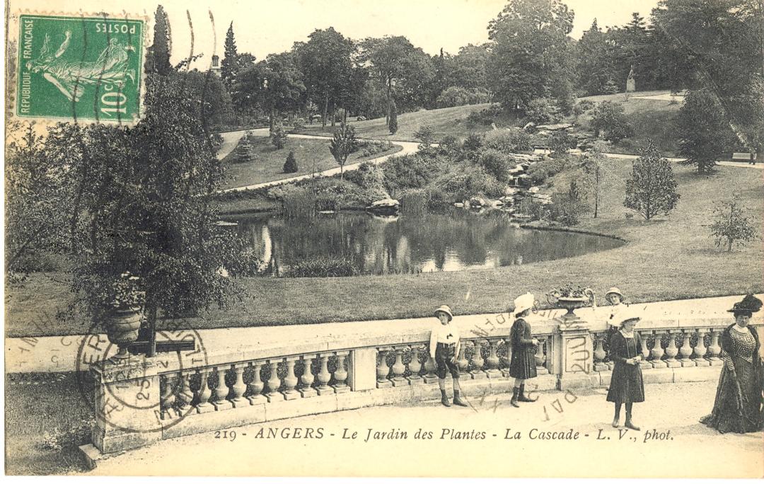 Jardin des plantes for Entretien jardin angers