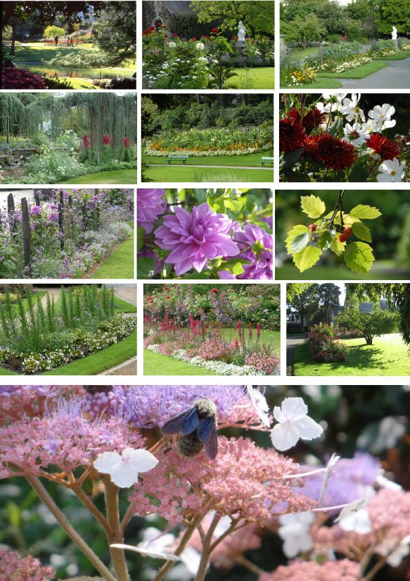 Jardin Des Plantes Angers Fr
