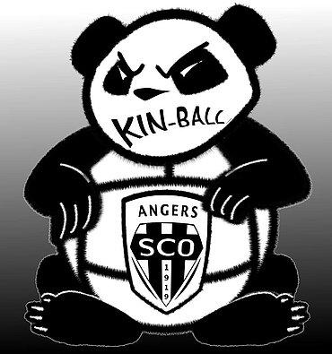 Logo SCO KIN-BALL ANGERS