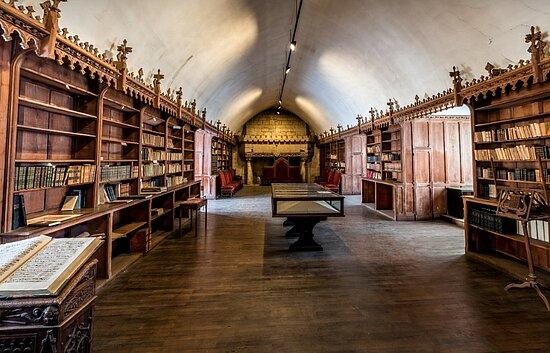Vue du de la bibliothèque du palais épiscopal