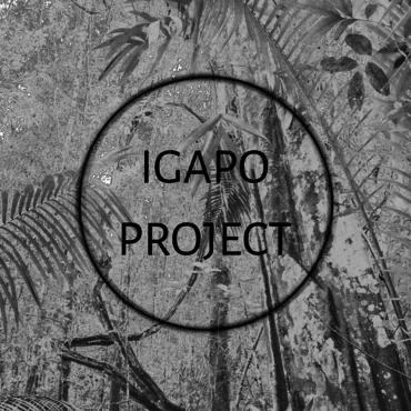 Logo IGAPO PROJECT