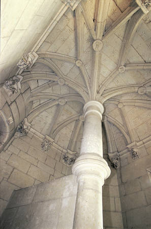 Voûte en palmier de l'escalier en vis. © Ville d'Angers - Cliché Thierry Bonnet