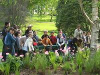 Jardin des Plantes © Service éducatif Angers, Ville d'art et d'histoire.