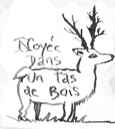 Logo NOYEE DANS UN TAS DE BOIS