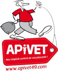 Logo APIVET - INSERTION PAR LE VETEMENT (ASS. POUR L')