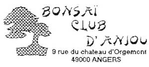Logo BONSAI CLUB D'ANJOU