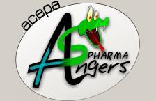 Logo COOPERATIVE DES ETUDIANTS EN PHARMACIE D'ANGERS (ASS.)