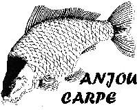 Logo ANJOU CARPE