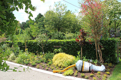 Fleurissement estival au parc de l'Arboretum
