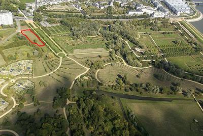 Des espaces canins de liberté au parc de Balzac