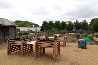 Jardins partagés dans les jardins familiaux de la Haloperie