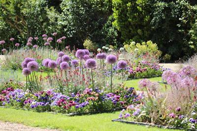 Une collection à découvrir au jardin des Plantes