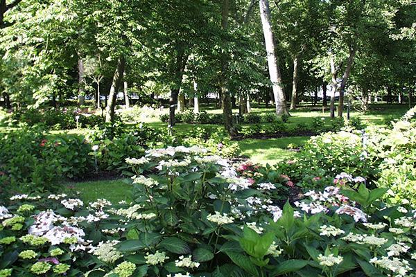 Ouverture d'un nouvel espace au parc de l'Arboretum