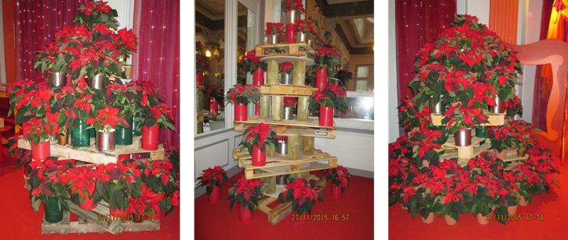 """""""Sapin de poinsettia"""", décoration de Noël réalisée par des élèves de 1èee Bac pro horiculture"""