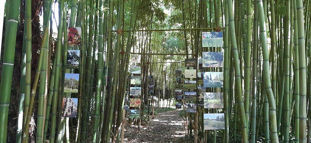 Exposition : Parcs et jardins en gestion écologique