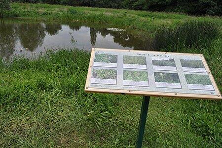Marais pédagogique de Briollay