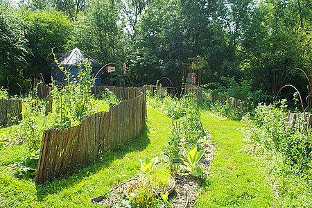 Atelier Permaculture – Semis d'automne