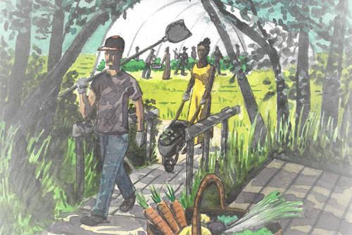 Le Jardin de cocagne angevin fête ses 20 ans