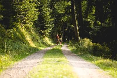 Randonnée : Un autre regard sur la nature
