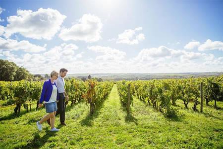 Angers, vins et escapades