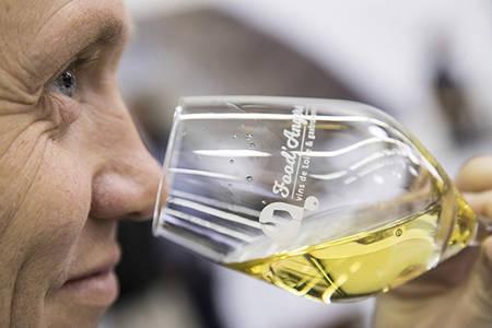 Atelier vin, éveil et sens