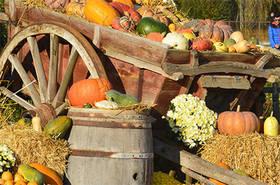 Fête de l'automne