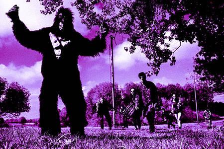 King Kong Orcheztra