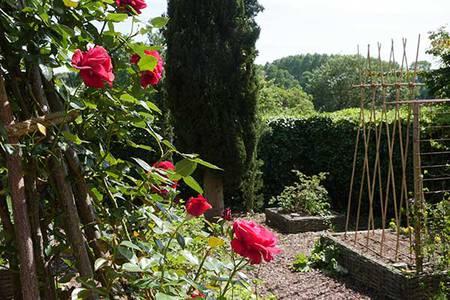 Sainte-Gemmes-sur-Loire, terre d'horticulteurs