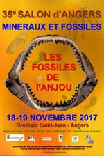 Image Salon des minéraux et fossiles