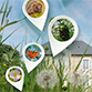 Image Rendez-vous à Pignerolle pour les 24 heures de la biodiversité