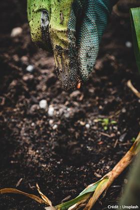 Atelier Permaculture – Semez la zizanie